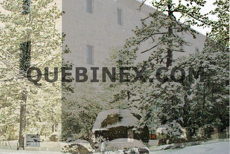 calderas de biomasa hoteles