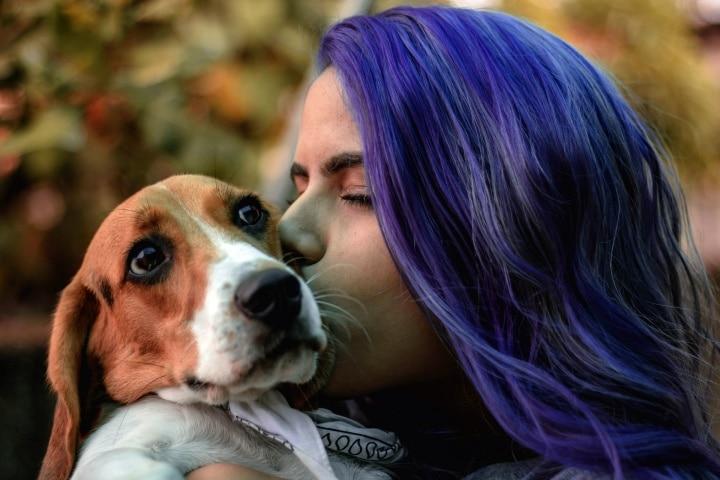 DOGust 1st: Cumpleaños universal para perros de refugio - 1 de Agosto