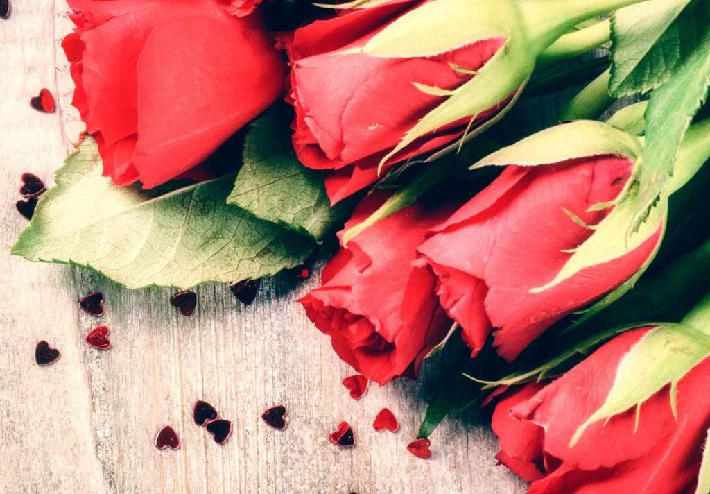 San Valentín - 14 de Febrero