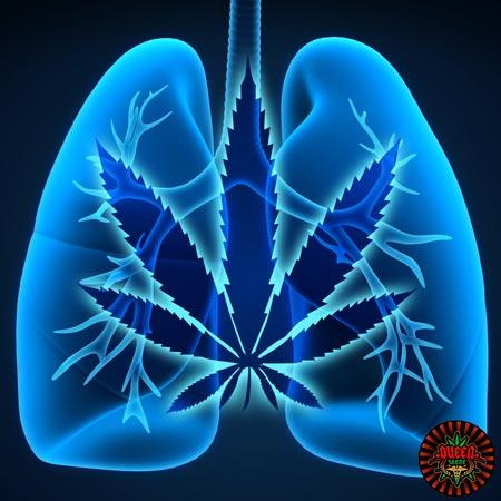 asthme cannabis medical
