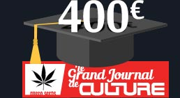 400 € JDC Queen Seeds
