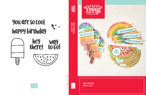 April 2021 Paper Pumpkin Stamp Case Insert - So Cool