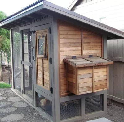 Chicken Coop Tour - DIY coop, four chickens, cost about ...