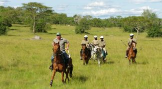 6 days Uganda wildlife safari Queen Elizabeth, Kibale chimpanzee trekking tour & Lake Mburo wildlife safari