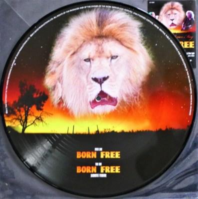 Maxi 45 Tours Picture Disc