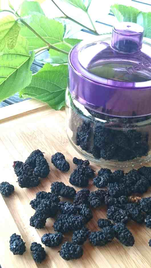 sugar free mulberry sweets-candies