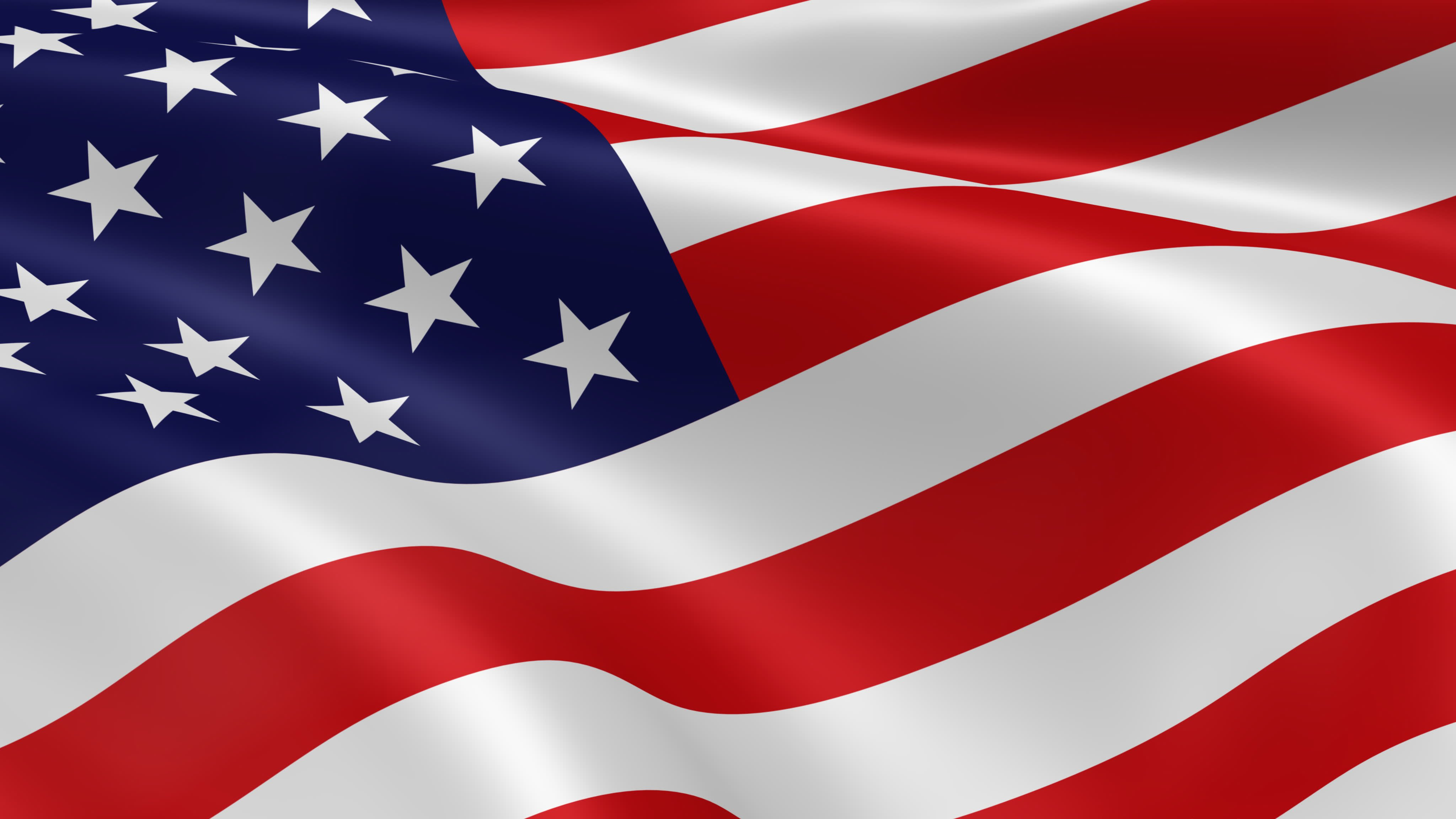 Image result for image american flag