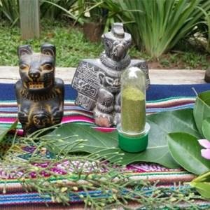 Amazon Herbals