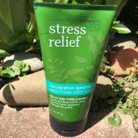 Bath & Body Works Eucalyptus Spearmint Smoothing Body Scrub Review