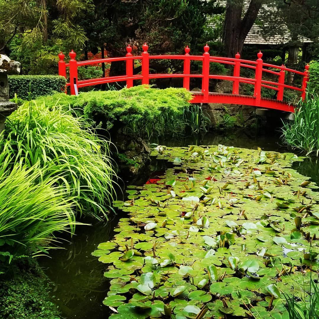 self care zen garden