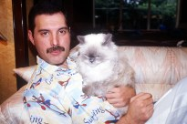Freddie with cat - 1985-1986