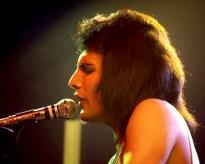 1976 live - Freddie