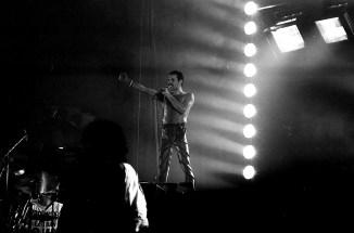 The Works Freddie