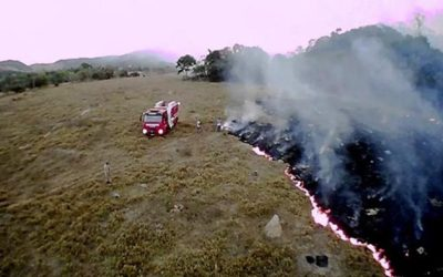 Amazonas arde