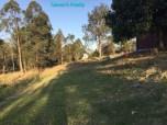 https://queensrealty.files.wordpress.com/2015/11/29-marburg-10-acres-backyard-and-slope.jpg