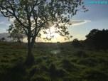 [30] Marburg 10 Acres - Land of the Backyard