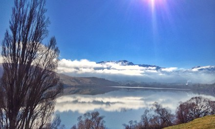 My Queenstownlife Wk 18th August