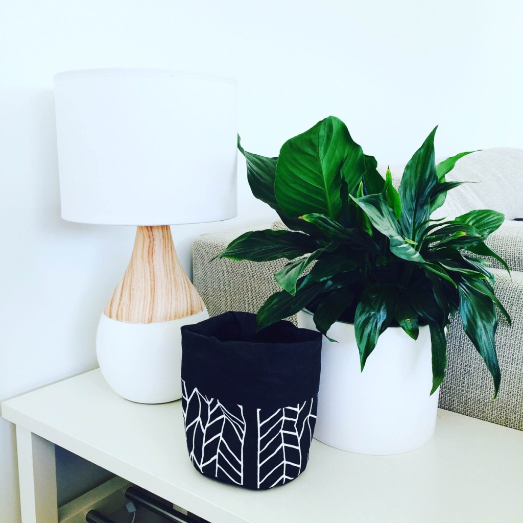 the art of indoor plants