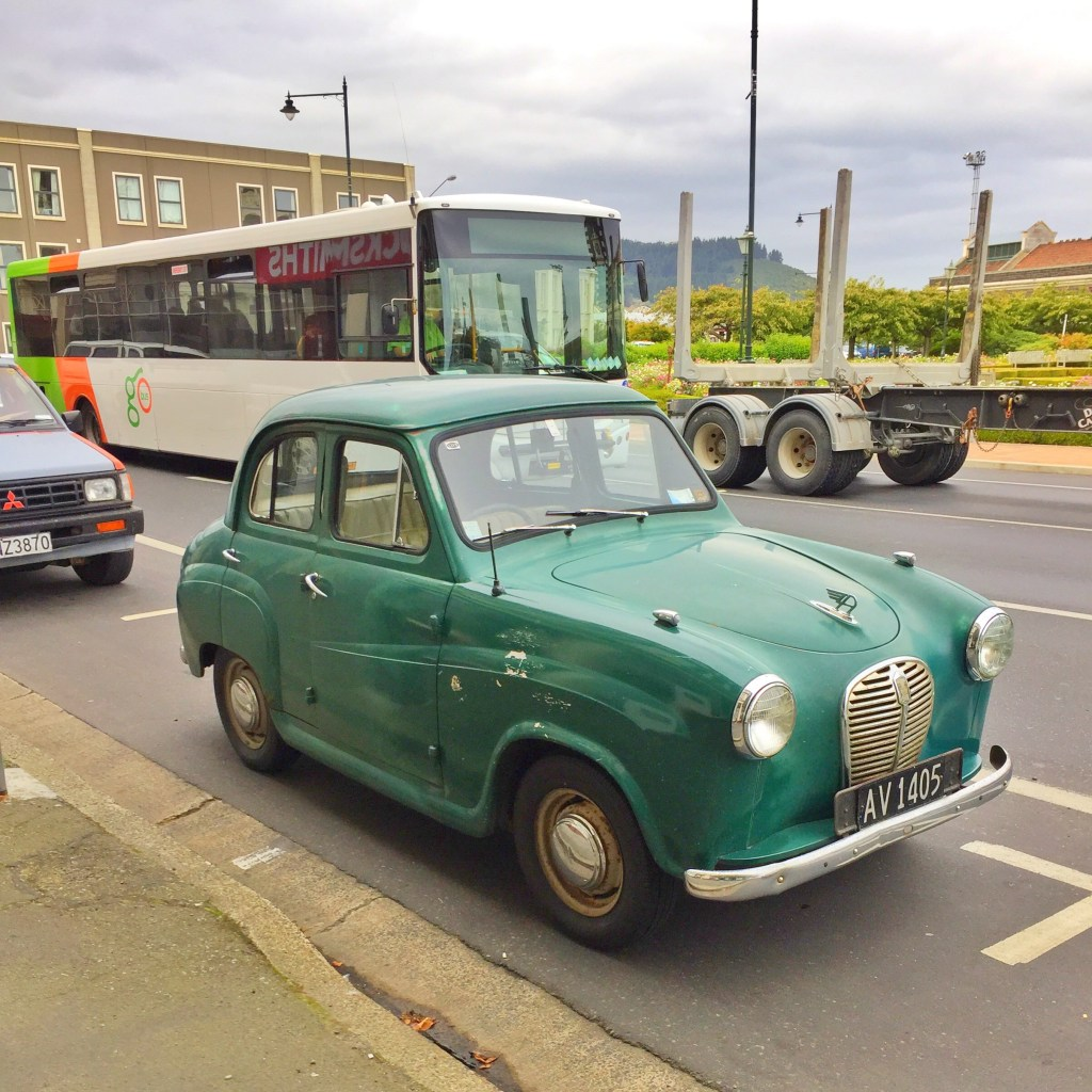 Dunedin and the 5 things you must do