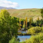 Arrowtown in Autumn when you can't visit