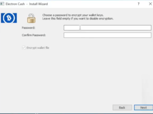 Encrypt ElectronCash Wallet with Password