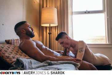 avery jones-sharok-7740