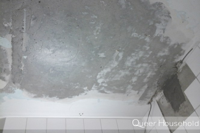 Reorganizing Small Bathroom Ceiling - Queer Household