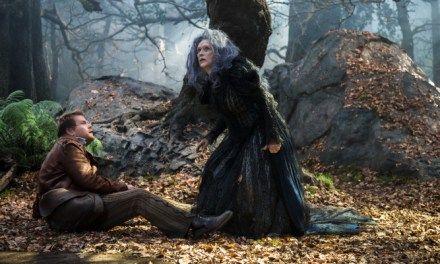 Into The Woods: I Could Not Wish For More