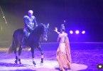 Quintessence : le cirque Gruss à Marseille, reportage en images