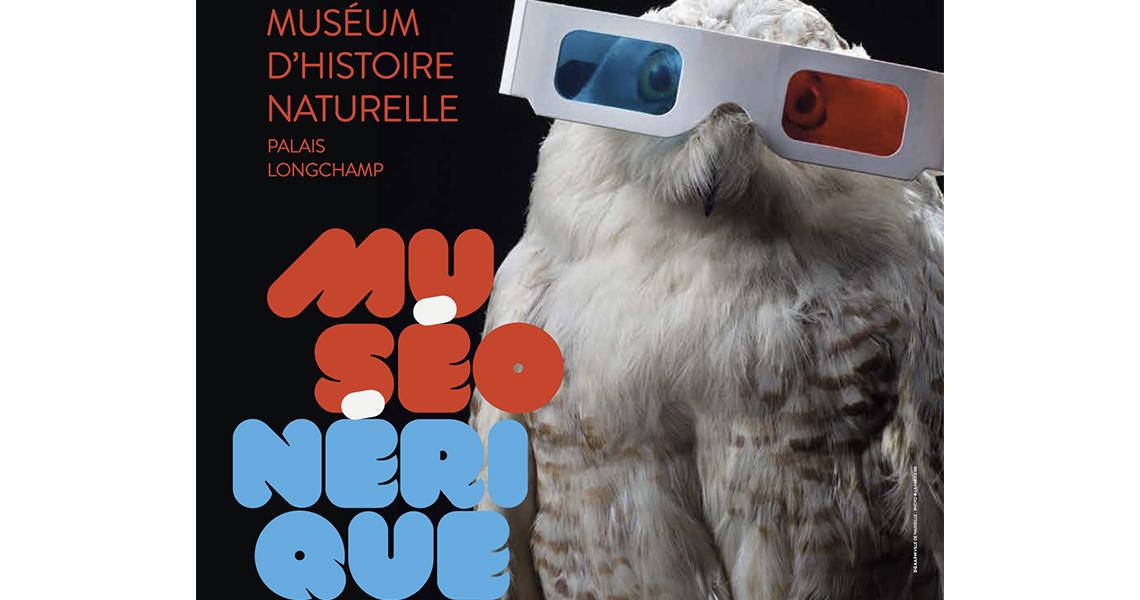 Muséonérique au Muséum d'Histoire Naturelle