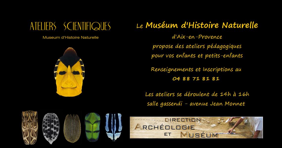 Ateliers pédagogiques au Museum d'Histoire Naturelle