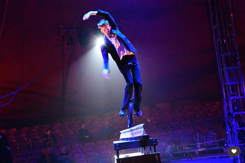Nofit State Circus, Lexicon