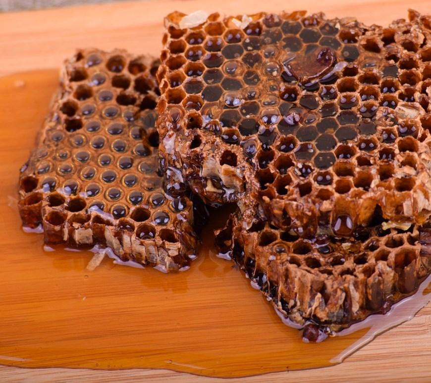 Catarinense, mel de canudo-de-pito pode ganhar IG