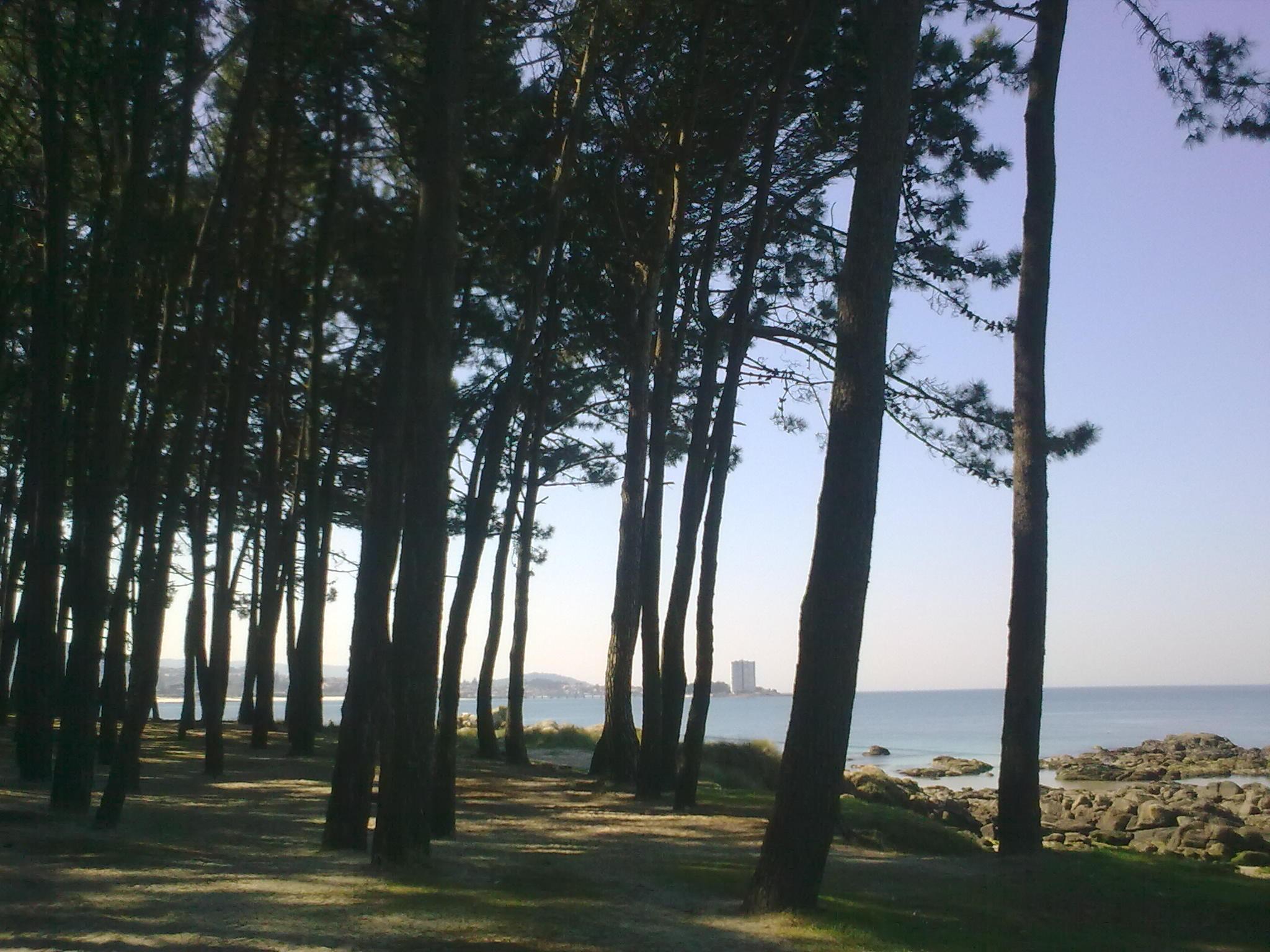 Los mismo lugares de Vigo hace muchos años y ahora.