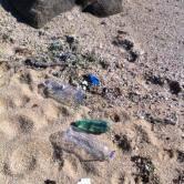 Playas para perros basura