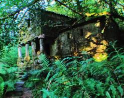 Los Molinos de Zamáns, ruta forestal Roteiro Etnográfico