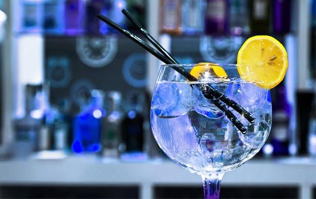 Fiesta Gin Tonic Premium