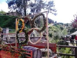 Festa da Sementeira do Millo 2015