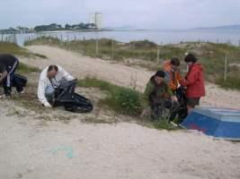 Novo Obradoiro de Voluntariado Ecolóxico