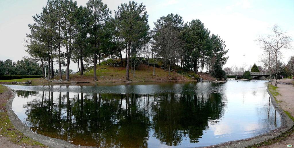 Vida saludable: Andaina polos montes de Vigo