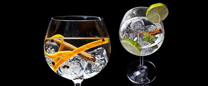 Gin Tonic Premium Party