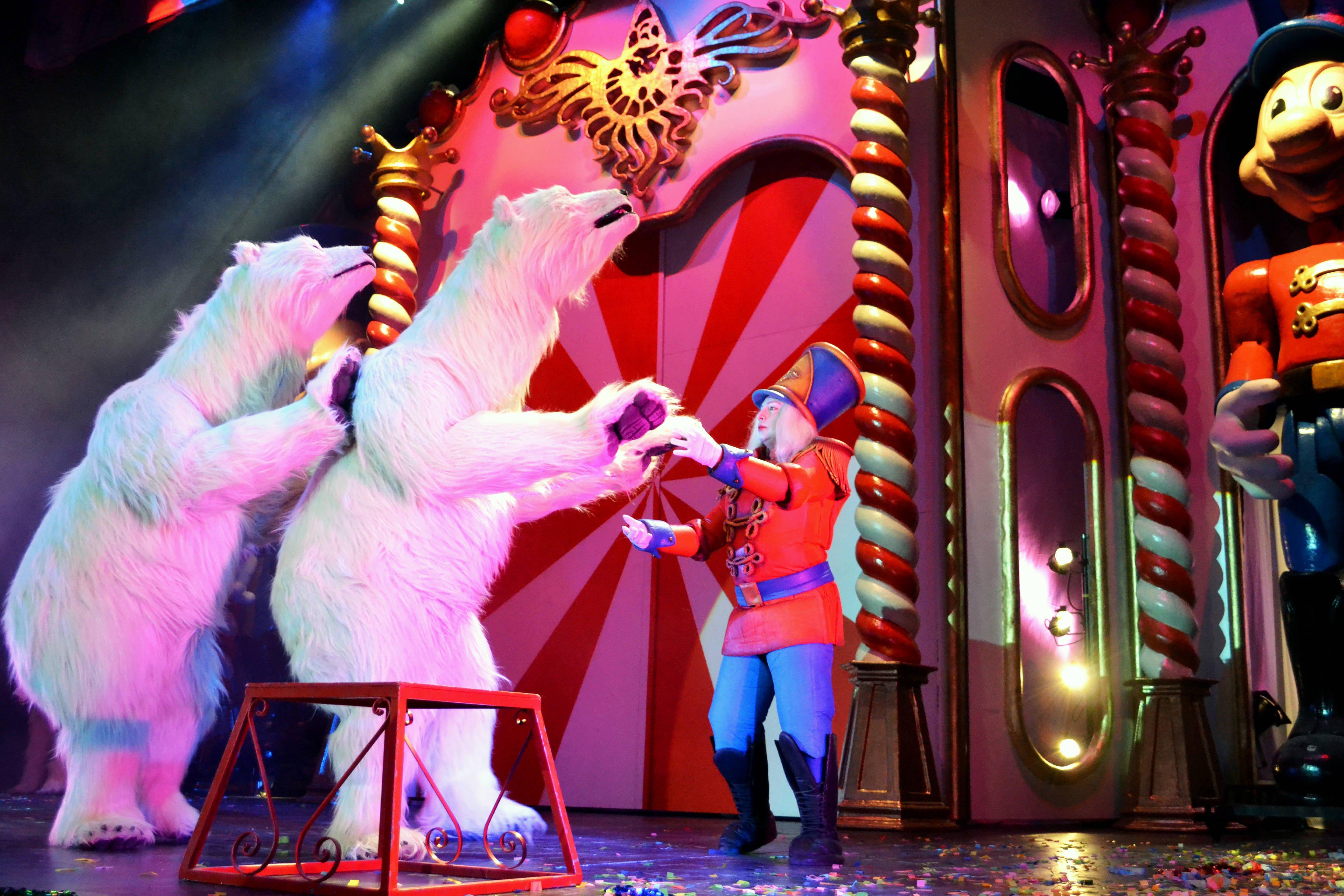 O Circo de Nadal Volve a Vigo