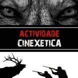 ACTIVIDADE CINEXÉTICA