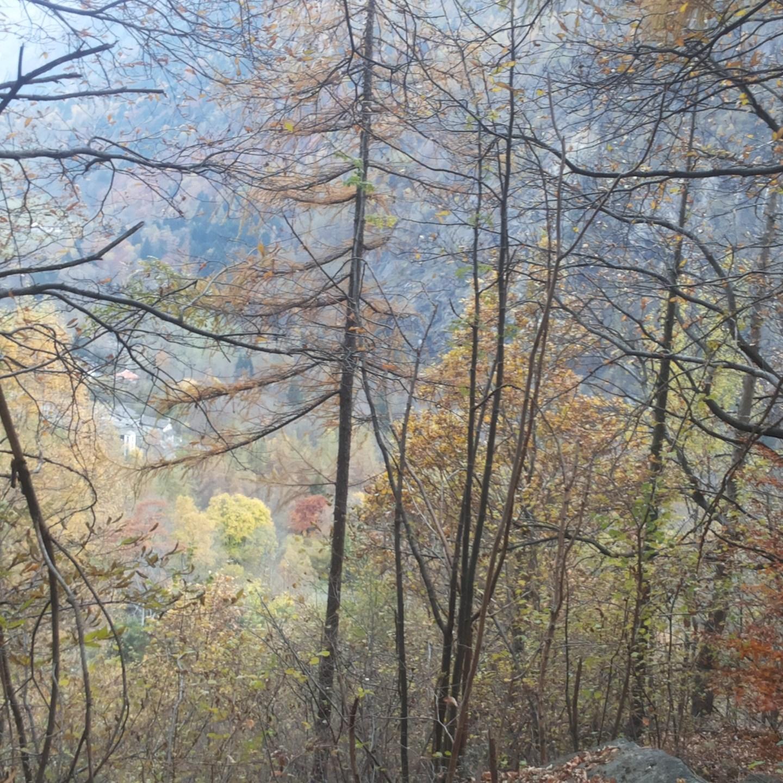 Breve racconto d'autunno