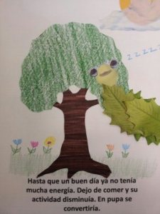 buttefly childrens book