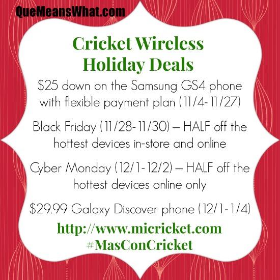 Cricket-holiday-deals-2013-masconcricket