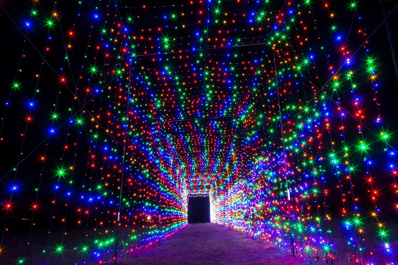 Add Some Sparkle To Your Holidays San Antonio With Christmas Light Fest At  Don Strange Ranch