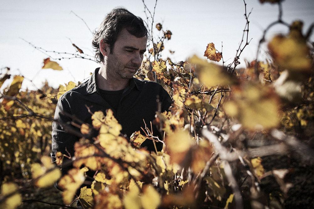Winemaker Pere Llopart
