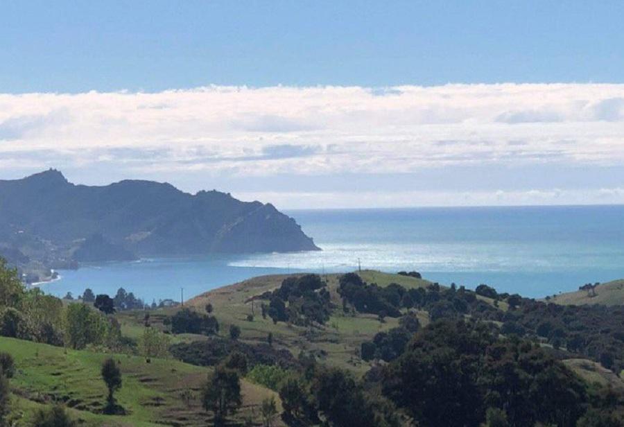 Tsunami Nueva Zelanda alerta