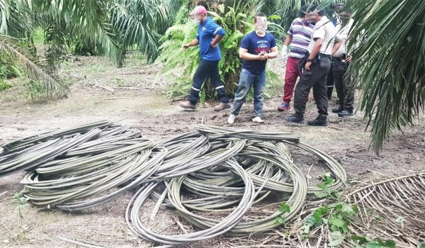 delincuentes cables CNEL